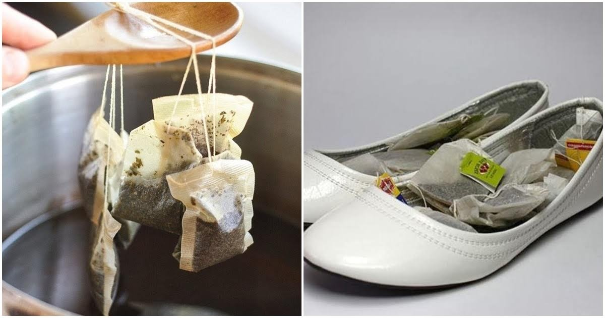 Đừng vứt bỏ bã trà túi lọc, chúng có nhiều công dụng tuyệt vời hơn bạn tưởng
