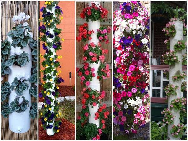 Vừa đẹp vừa tiết kiệm diện tích với 12 cách trồng cây trong ống nhựa
