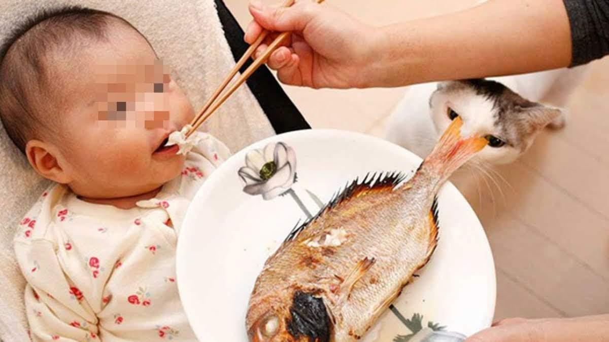 Đừng uống giấm nếu bị hóc xương cá, dùng mẹo nhỏ này xương cá sẽ biến mất